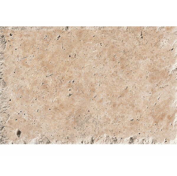 16 x 24 Travertine Field Tile in Light Walnut Chiseled Brushed by Parvatile