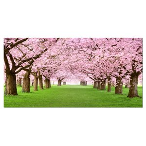 Gorgeous Cherry Trees in Full Blossom Landscape Photographic Print on Wrapped Canvas by Design Art