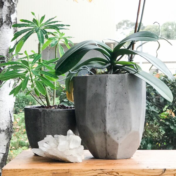 Hollister 2-Piece Composite Pot Planter Set by My Spirit Garden