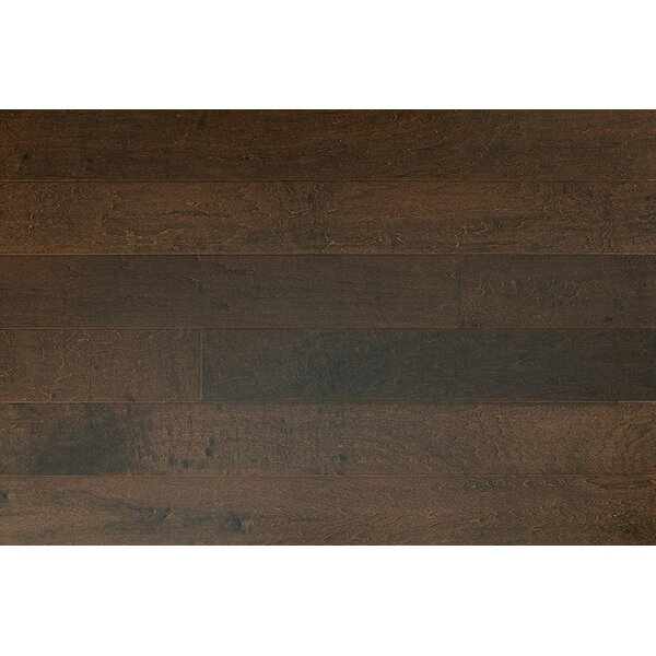 Zellmer 5 Engineered Maple Hardwood Flooring In Milano by Charlton Home