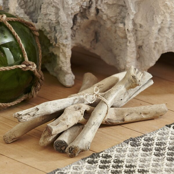 Driftwood Bundle by Birch Lane™
