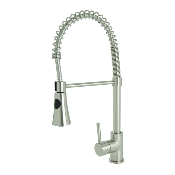 Spring Coil Pull Down Single Handle Kitchen Faucet by Fontaine by Italia