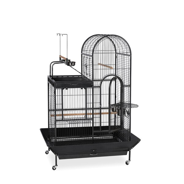 Eli Deluxe Parrot Bird Cage with Play Top by Archie & Oscar