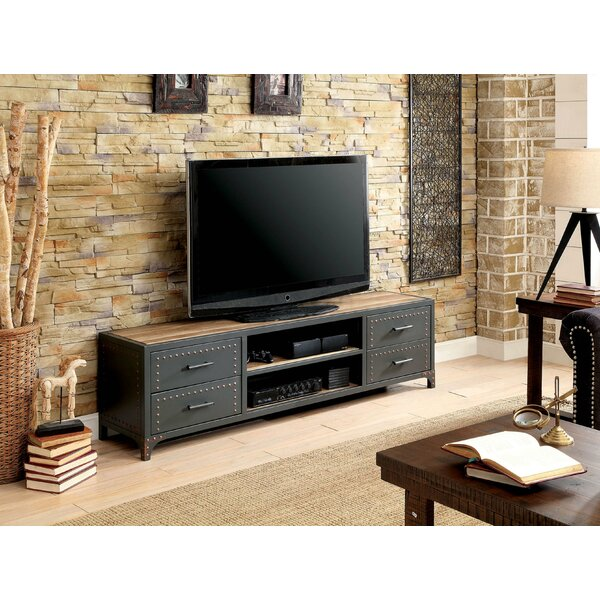 SkeltinCleveland TV Stand for TVs up to 60