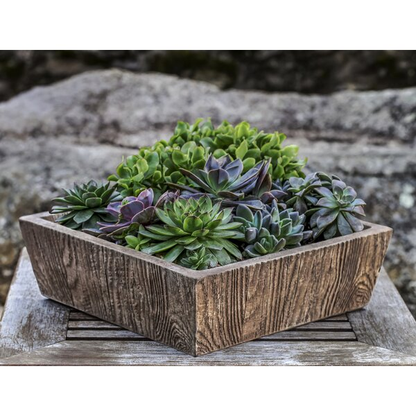 Ravishankar Tapered Aged Limestone Cast Stone Planter Box by Union Rustic