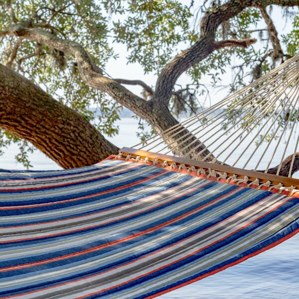 Lizeth Double Tree Hammock by Freeport Park Freeport Park