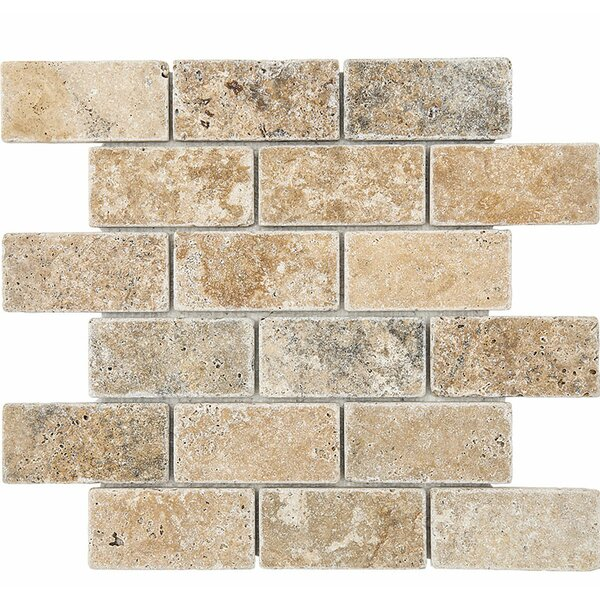 Philadelphia Mosaic 2 x 4 Stone Mosaic Tile Tumbled by Parvatile