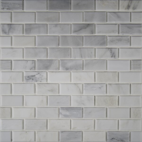 Arabescato Carrara Greecian Mounted 2 x 4 Marble Mosaic Tile in White by MSI