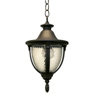 Comparison Phillipstown 1-Light Outdoor Pendant By Alcott Hill