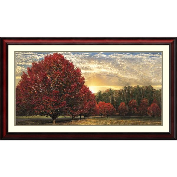 Crimson Trees Framed Wall Art by Darby Home Co