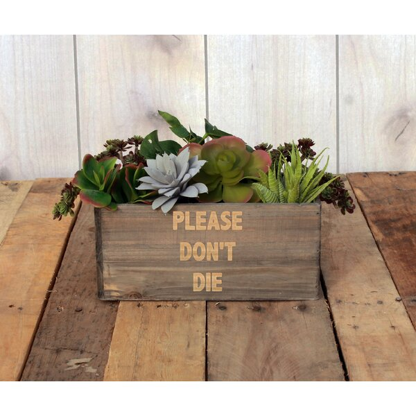 Lyons Personalized Wood Planter Box by Winston Porter