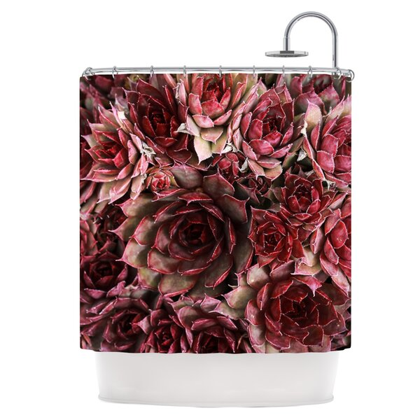 Red Succulents Shower Curtain by East Urban Home