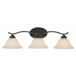 Affordable Price 3-Light Vanity Light By TransGlobe Lighting
