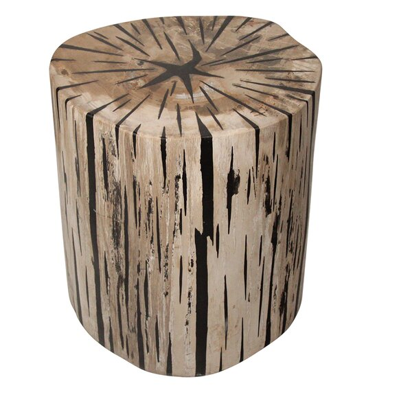Petrified Wood Accent Stool by Ibolili