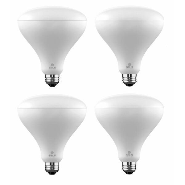 17W E26 Dimmable LED Floodlight Light Bulb (Set of 4) by SELS - Smart Era Lighting Systems