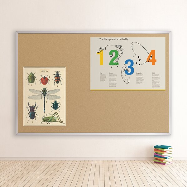 Valu-Tak Series Wall Mounted Bulletin Board by Best-Rite®