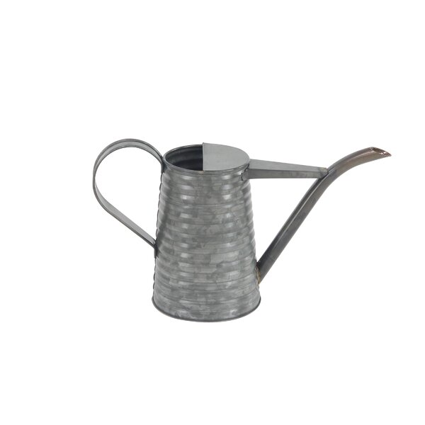 Arsenovic Distressed Iron Watering Can by August Grove