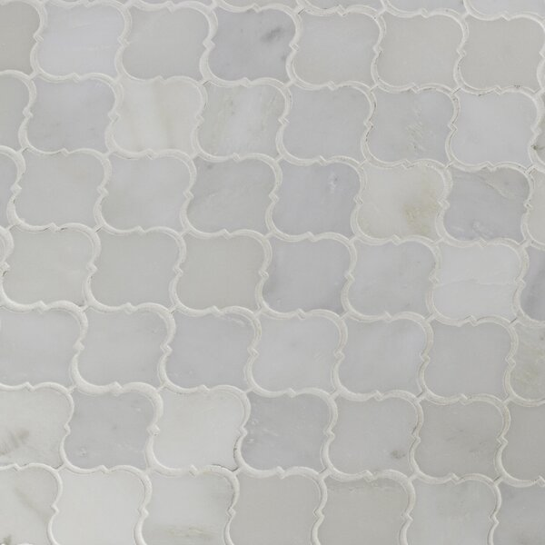 Greecian Marble Mosaic Tile in White by MSI