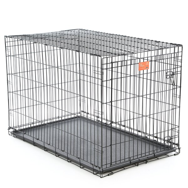 Camila Life Stages Fold & Carry Single Door Pet Crate by Tucker Murphy Pet