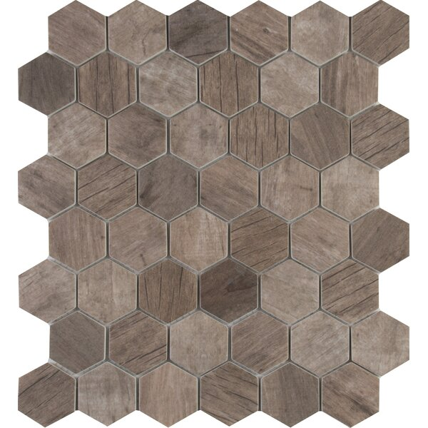 Driftwood Hexagon 2 x 2 Glass Mosaic Tile in Brown by MSI