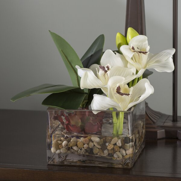 Orchids and Succulent in Glass by World Menagerie