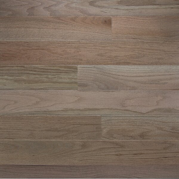 Color Strip 2-1/4 Solid White Oak Hardwood Flooring in Smoke by Somerset Floors