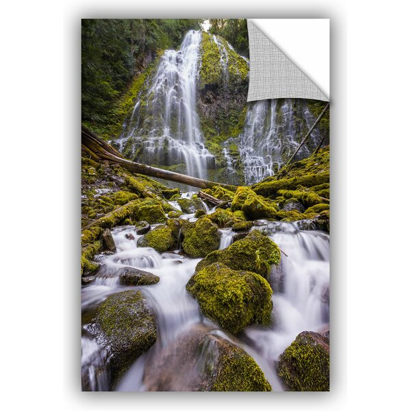 Cody York Proxy Falls Oregon 5 Wall Decal by ArtWall