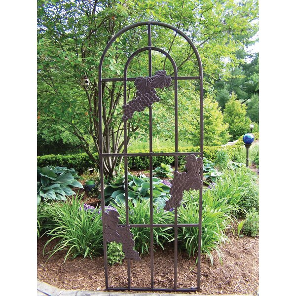 Grape Steel Arched Trellis by Oakland Living