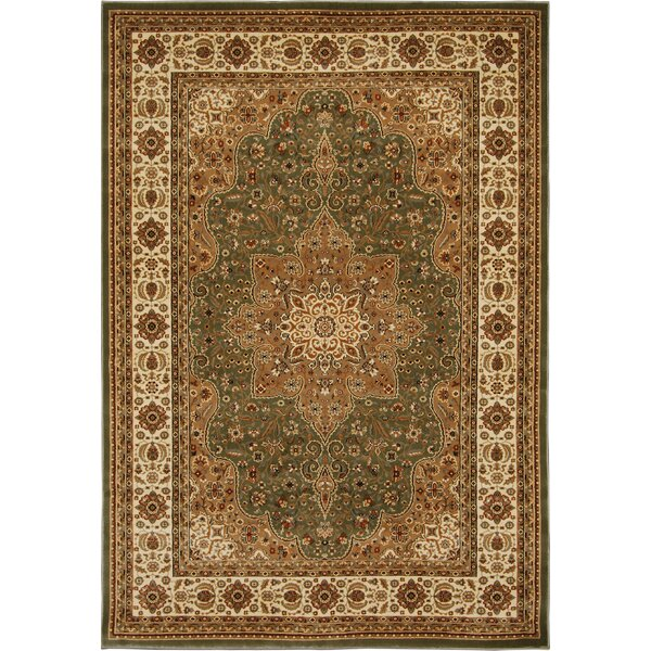 Triumph Green Area Rug by Home Dynamix