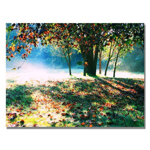 Morning Moods by Beata Czyzowska Young Photographic Print on Wrapped Canvas by Trademark Fine Art
