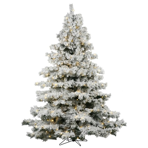 The Holiday Aisle Flocked Alaskan 7 5 White Artificial Christmas Tree With 900 Led Lights Stand Reviews Wayfair