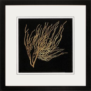 Coral 4 Piece Framed Graphic Art Set by Propac Images
