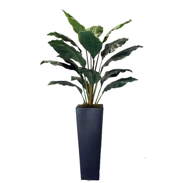 Faux Spathiphyllum Floor Plant in Planter by Creative Branch