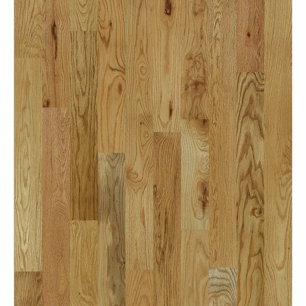 Inglewood Oak 5 Solid Oak Hardwood Flooring in North Fork by Shaw Floors
