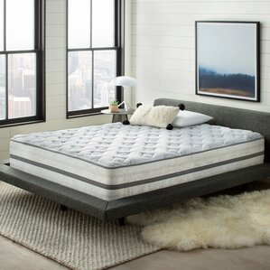 Wayfair Sleep? Wayfair Sleep 14