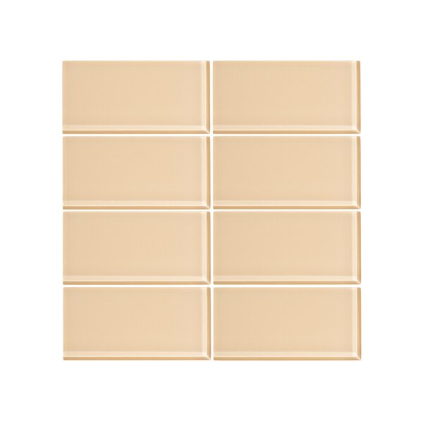 3 x 6 Glass Subway Tile in Creamsicle (Set of 6) by Vicci Design