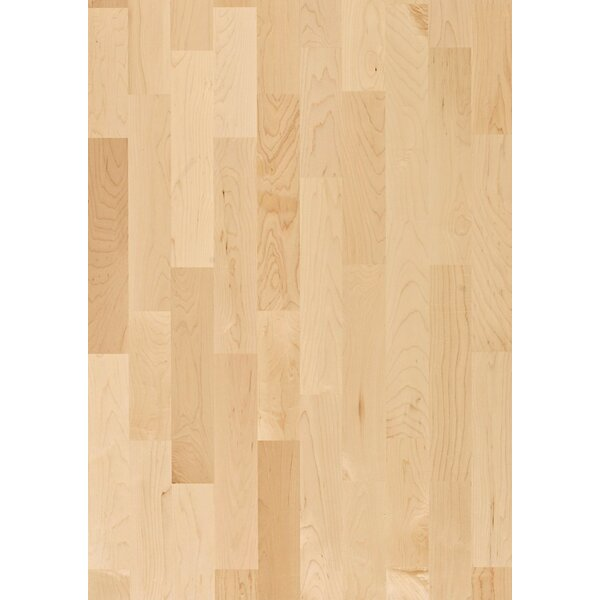 Activity 7-7/8 Engineered Maple Hardwood Flooring in Tan by Kahrs