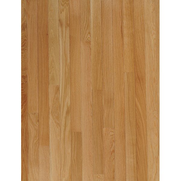 2-1/4 Solid Oak Hardwood Flooring in Sea Shell by Armstrong Flooring