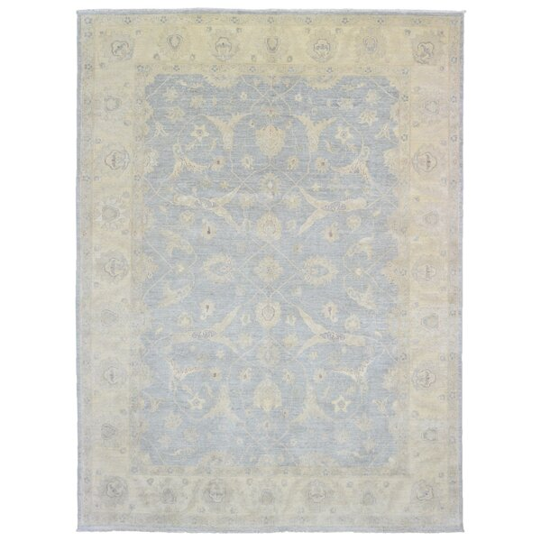 Baron Rectangle Hand Woven Wool Blue/Beige Area Rug by Isabelline