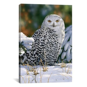 Snowy Owl by William Vanderdasson Photographic Print on Wrapped Canvas by iCanvas