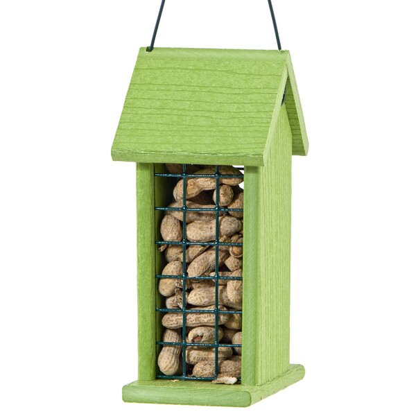 Audubon Suet Bird Feeder by Woodlink
