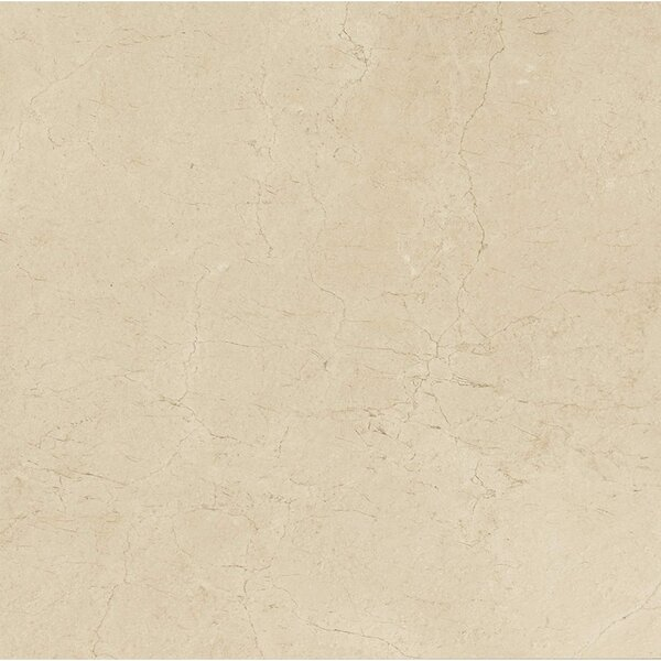 El Dorado 18 x 36 Porcelain Field Tile in Oyster by Grayson Martin
