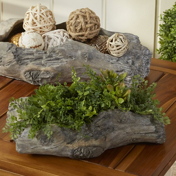 Udall Cement Pot Planter by Birch Lane™