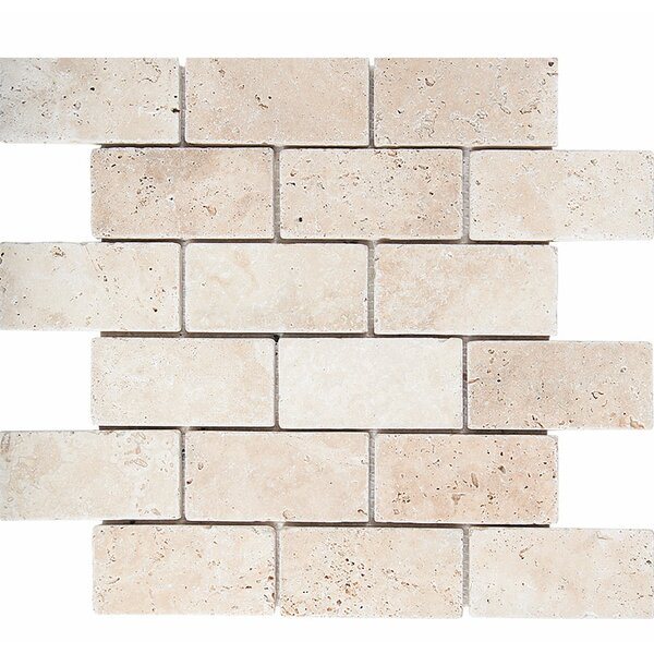 Tumbled Brick 2 x 4 Stone Mosaic Tile in Ivory by Parvatile