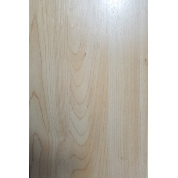 4.86 x 47.24 x 10mm Maple Laminate Flooring in Light brown by Abolos