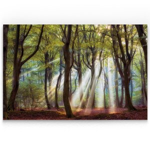 'Majestic Morning' Oil Painting Print on Wrapped Canvas by Alcott Hill