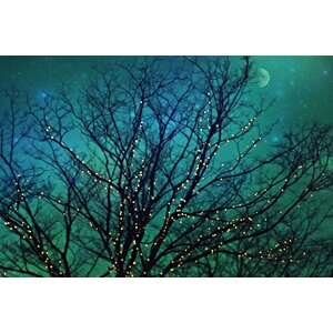 'Magical Night' by Sylvia Cook Painting Print on Wrapped Canvas by Marmont HIll