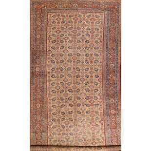 Provincial Antique Traditional Sultanabad Persian Hand-Knotted Wool BeigeBrown IndoorOutdoor Area Rug
