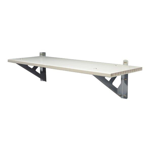 SkyLight™ Storage Shed Shelf Kit by Palram