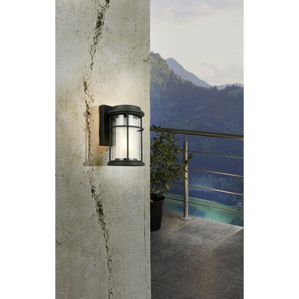 Drane Outdoor Wall Lantern by Canora Grey